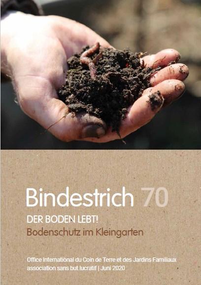 Office International - Bindestrich 70