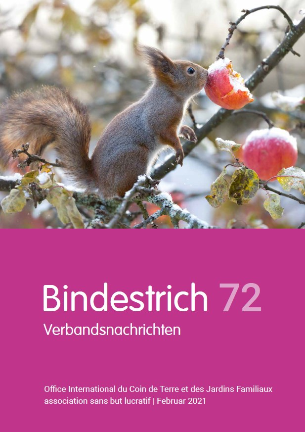 Office International - Bindestrich 72