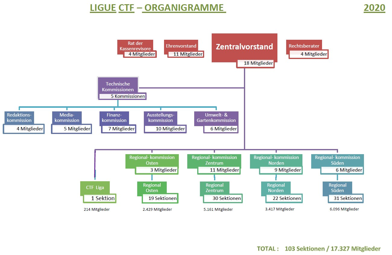 ORGANIGRAMME LIGUE CTF DE 2020 2