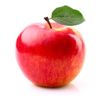 Fiche de renseignements de la pomme