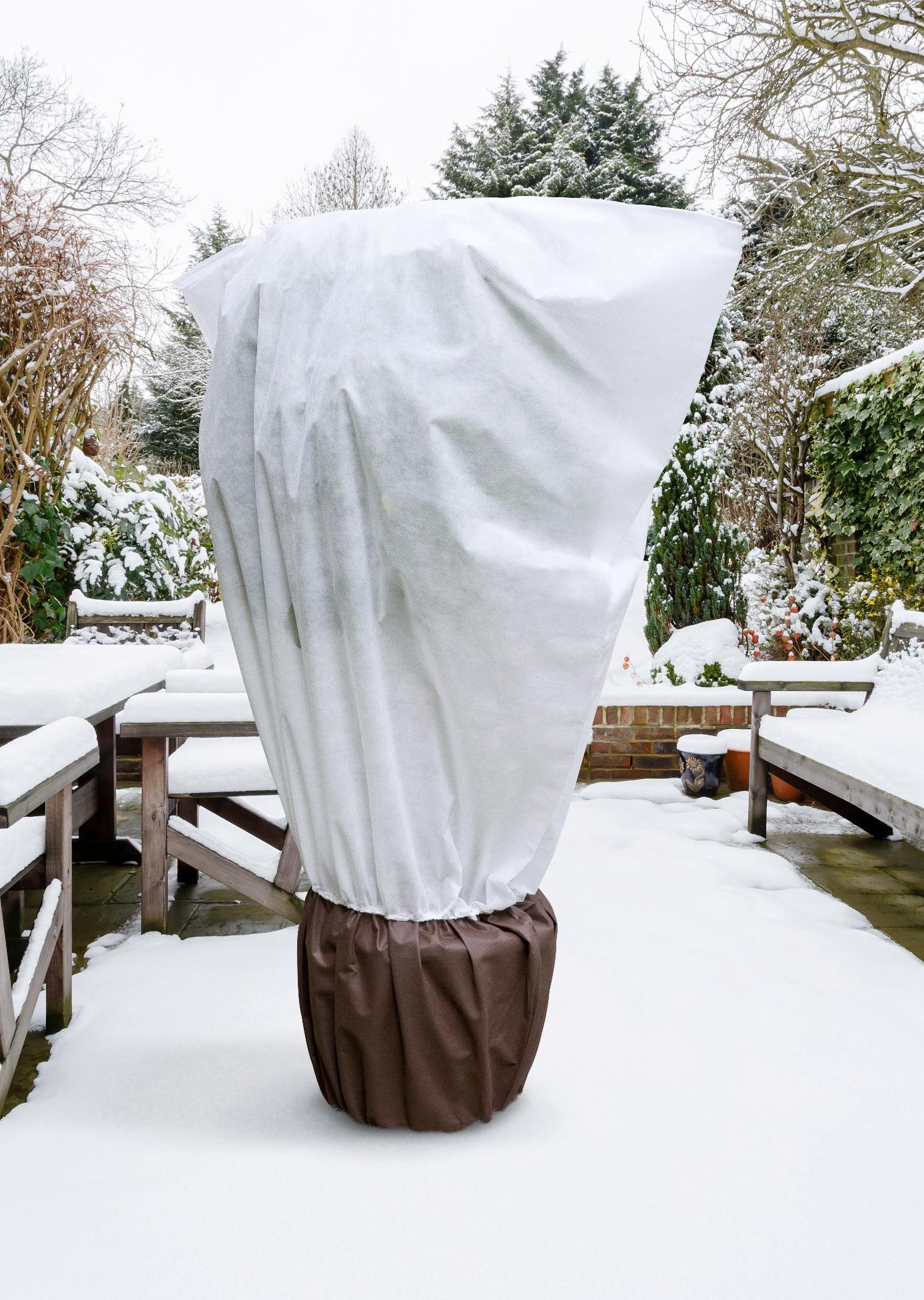 Winterschutz Tipps für den Garten