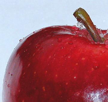"""Winterliche Apfelträume – Apfelpunsch und Bratapfel: Tipps von Ihrem """"Eist Uebst"""" - Gärtner"""